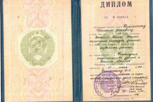 Expert Kaminskiy Diplom3
