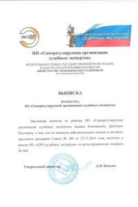 Expert Kaminskiy Roo1