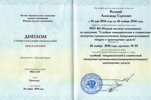 Expert Kolodiy Diplom2